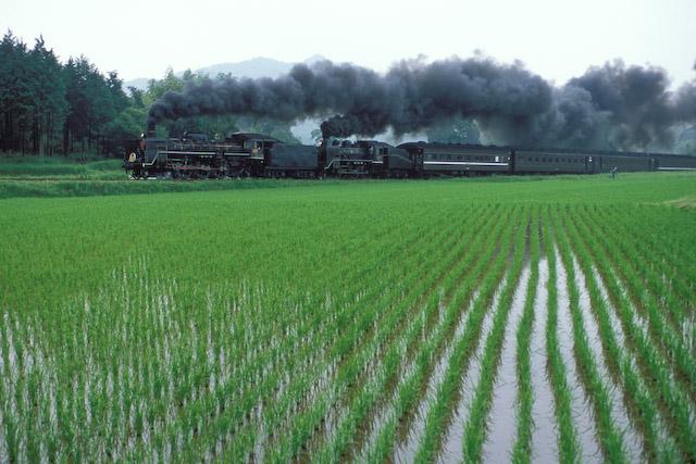 yamaguchi0306-012.jpg